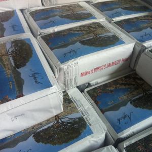 sacchi-carta-paper-bag-10kg